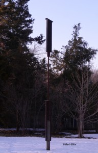 "Barb's pole-mounted rocket-style bat box awaits the spring return of ""her"" bats.  © Barb Elliot. Click to enlarge."