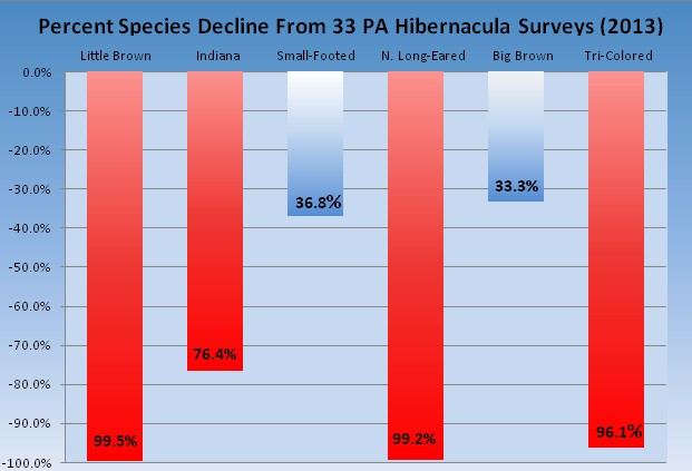 Losses at 34 hibernacula are representative of PA statewide bat species declines.  Click to enlarge.